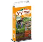 Dcm Vivimus